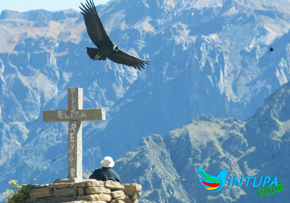 colca by intupa