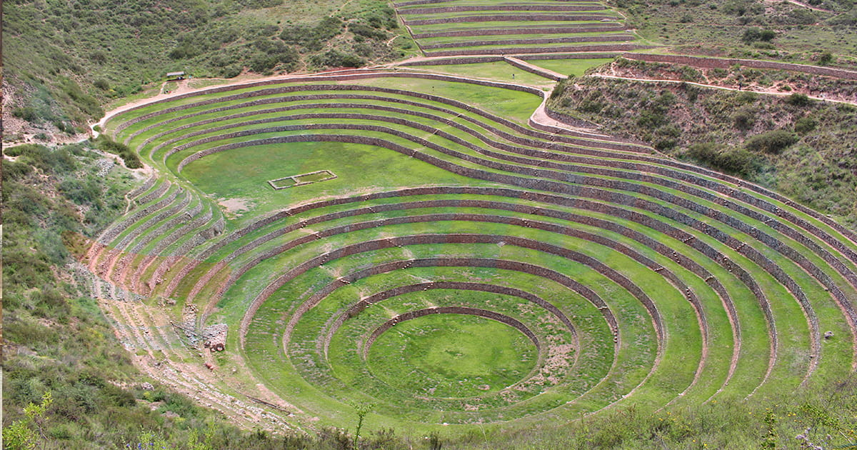 Moray-Intupa