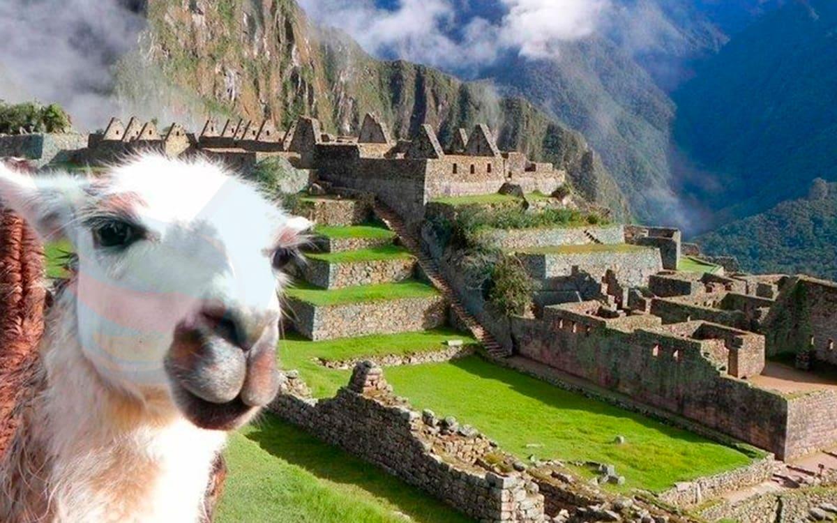 Selfie-Llama-Machu-Picchu