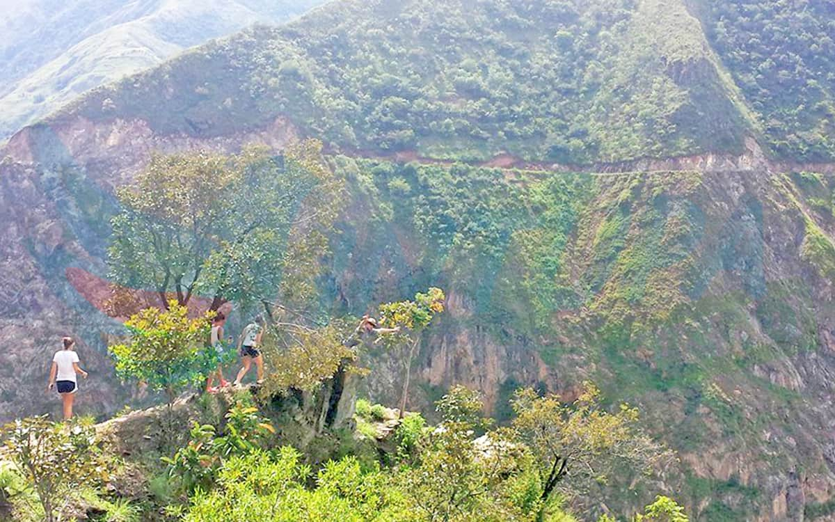 Inca-jungle